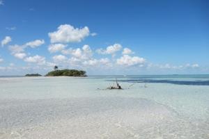 imagen Punta Allen